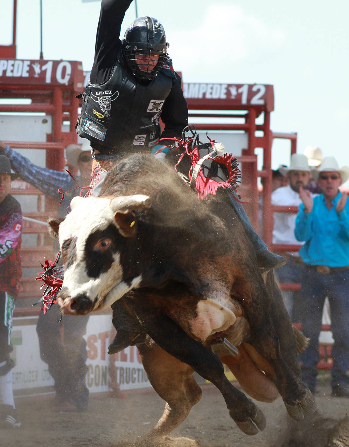 Bull rider Brock Radford tries his best to keep on Wranglers Extreme June 30 during the fourth day of rodeo action at the Ponoka Stampede.